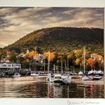 Coast of Maine Photo- Fall Foliage