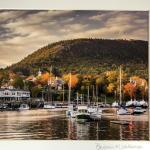 Coast of Maine Photo- Fall Foliage